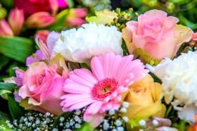 Spalvota gėlių puokštė